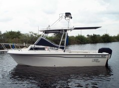 Extend-A-Top Boat Shade 11
